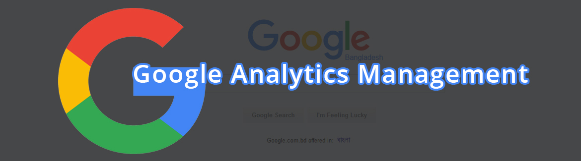 Google Analytics Management