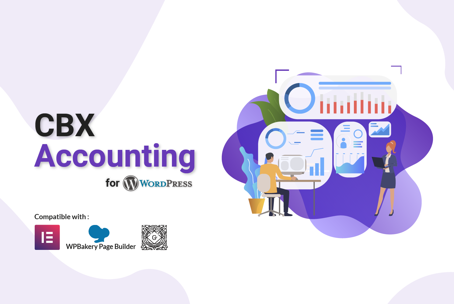 CBX Accounting for WordPress